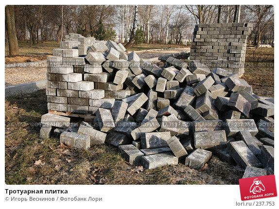 Тротуарная плитка, фото № 237753, снято 30 марта 2008 г. (c) Игорь Веснинов / Фотобанк Лори