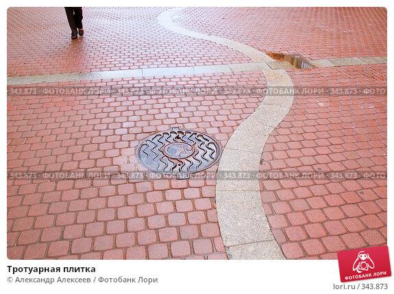 Купить «Тротуарная плитка», эксклюзивное фото № 343873, снято 26 июня 2008 г. (c) Александр Алексеев / Фотобанк Лори