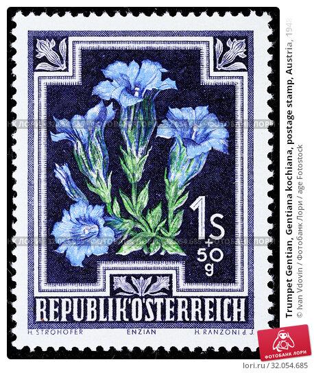 Trumpet Gentian, Gentiana kochiana, postage stamp, Austria, 1948. (2013 год). Редакционное фото, фотограф Ivan Vdovin / age Fotostock / Фотобанк Лори