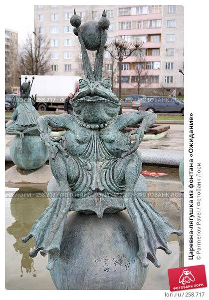 Царевна-лягушка из фонтана «Ожидание», фото № 258717, снято 19 апреля 2008 г. (c) Parmenov Pavel / Фотобанк Лори