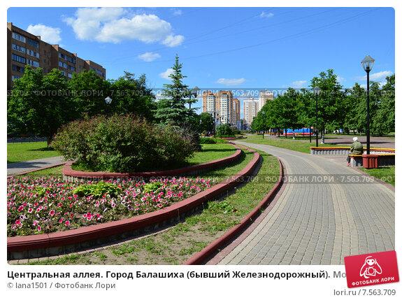 Купить «Центральная аллея. Город Балашиха (бывший Железнодорожный). Московская область», эксклюзивное фото № 7563709, снято 4 июня 2015 г. (c) lana1501 / Фотобанк Лори