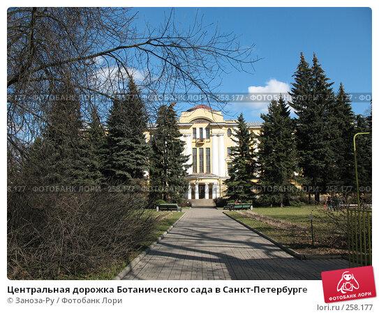 Центральная дорожка Ботанического сада в Санкт-Петербурге, фото № 258177, снято 12 апреля 2008 г. (c) Заноза-Ру / Фотобанк Лори