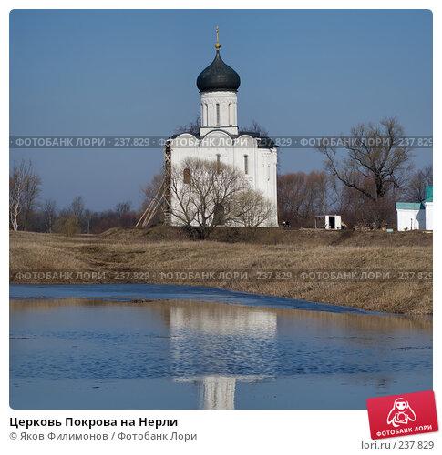 Церковь Покрова на Нерли, фото № 237829, снято 23 января 2017 г. (c) Яков Филимонов / Фотобанк Лори