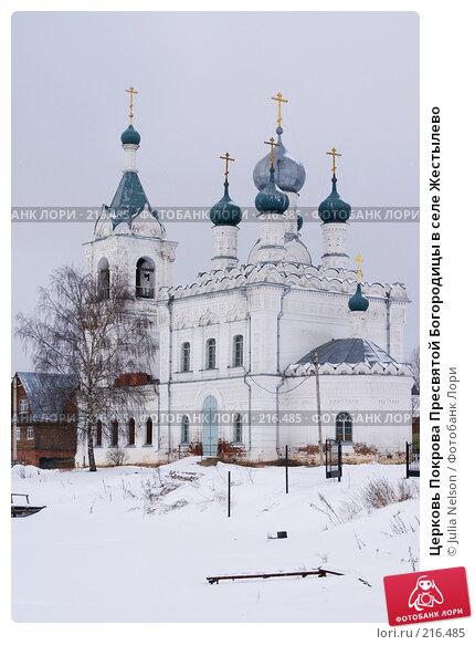 Церковь Покрова Пресвятой Богородицы в селе Жестылево, фото № 216485, снято 15 февраля 2008 г. (c) Julia Nelson / Фотобанк Лори