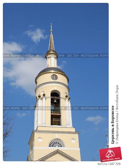 Церковь в Боровске, фото № 247729, снято 19 февраля 2017 г. (c) Лифанцева Елена / Фотобанк Лори