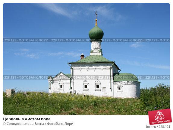 Церковь в чистом поле, эксклюзивное фото № 228121, снято 4 июля 2006 г. (c) Солодовникова Елена / Фотобанк Лори