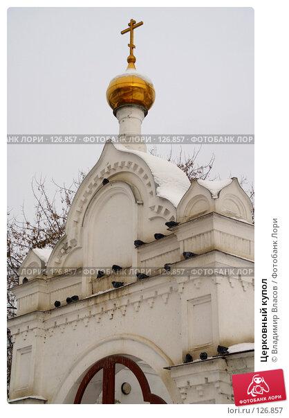 Церковный купол, фото № 126857, снято 21 ноября 2007 г. (c) Владимир Власов / Фотобанк Лори