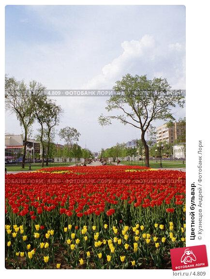 Купить «Цветной бульвар.», фото № 4809, снято 24 марта 2018 г. (c) Кузнецов Андрей / Фотобанк Лори