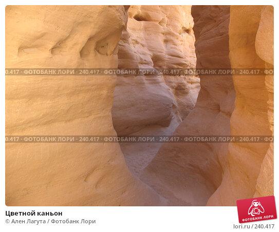Цветной каньон, фото № 240417, снято 4 марта 2008 г. (c) Ален Лагута / Фотобанк Лори
