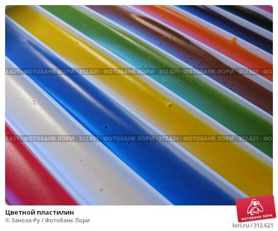 Цветной пластилин, фото № 312621, снято 3 июня 2008 г. (c) Заноза-Ру / Фотобанк Лори