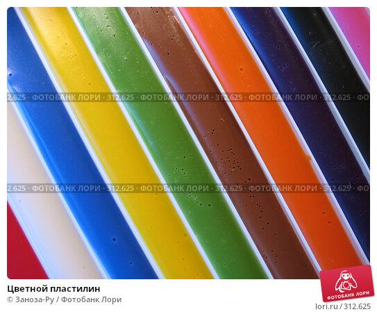 Цветной пластилин, фото № 312625, снято 3 июня 2008 г. (c) Заноза-Ру / Фотобанк Лори