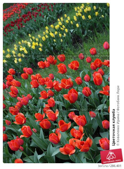 Цветочная клумба, фото № 286401, снято 13 мая 2008 г. (c) Коваленко Ирина / Фотобанк Лори