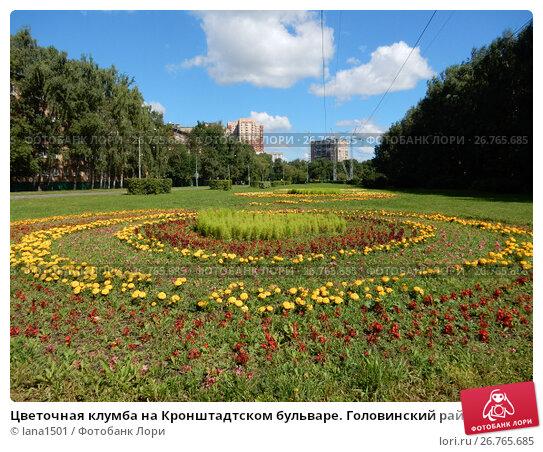 Купить «Цветочная клумба на Кронштадтском бульваре. Головинский район. Город Москва», эксклюзивное фото № 26765685, снято 15 августа 2017 г. (c) lana1501 / Фотобанк Лори