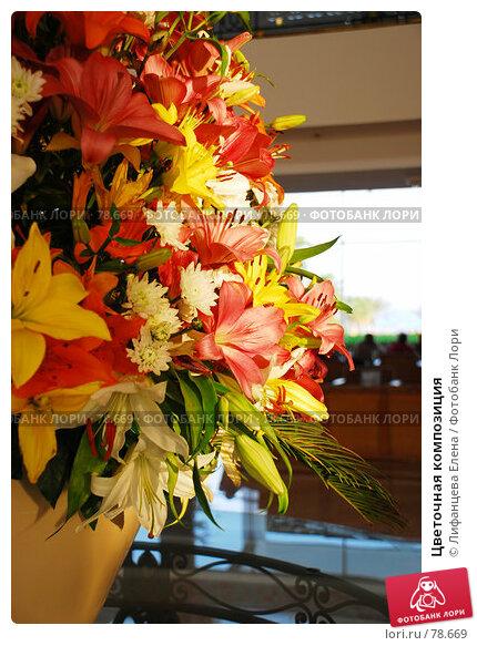 Цветочная композиция, фото № 78669, снято 22 августа 2007 г. (c) Лифанцева Елена / Фотобанк Лори