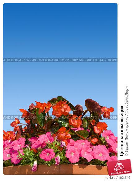 Цветочная композиция, фото № 102649, снято 23 июля 2017 г. (c) Вадим Пономаренко / Фотобанк Лори