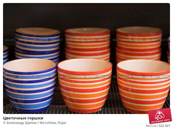 Купить «Цветочные горшки», эксклюзивное фото № 322421, снято 8 июня 2008 г. (c) Александр Щепин / Фотобанк Лори