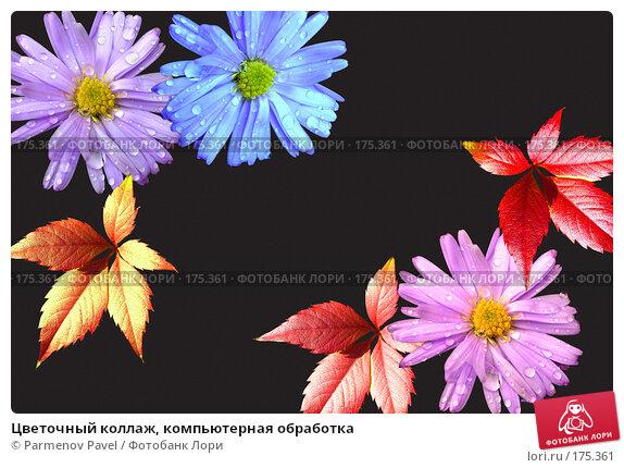 Цветочный коллаж, компьютерная обработка, фото № 175361, снято 11 января 2008 г. (c) Parmenov Pavel / Фотобанк Лори