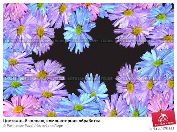 Цветочный коллаж, компьютерная обработка, фото № 175365, снято 11 января 2008 г. (c) Parmenov Pavel / Фотобанк Лори