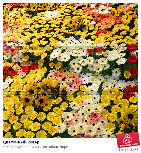Цветочный ковёр, фото № 148453, снято 6 апреля 2003 г. (c) Хайрятдинов Ринат / Фотобанк Лори