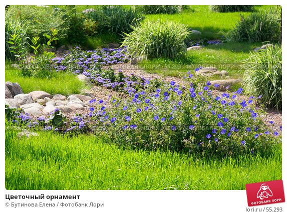 Цветочный орнамент, фото № 55293, снято 24 июня 2007 г. (c) Бутинова Елена / Фотобанк Лори