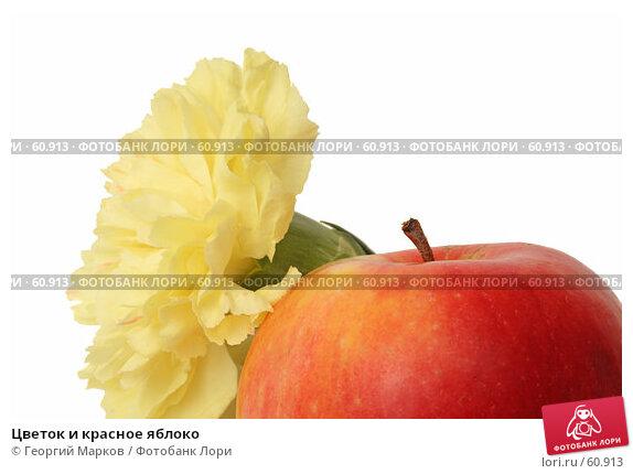 Цветок и красное яблоко, фото № 60913, снято 4 апреля 2007 г. (c) Георгий Марков / Фотобанк Лори