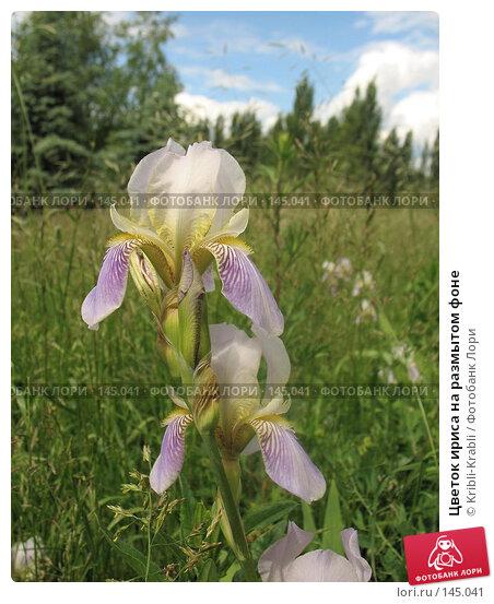 Цветок ириса на размытом фоне, фото № 145041, снято 12 июня 2007 г. (c) Kribli-Krabli / Фотобанк Лори