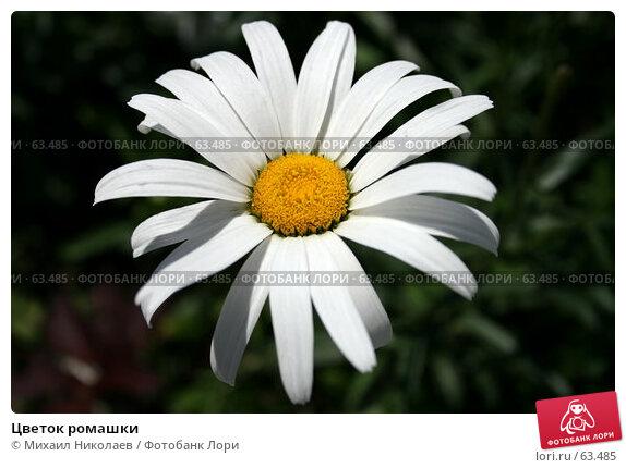 Цветок ромашки, фото № 63485, снято 16 июля 2007 г. (c) Михаил Николаев / Фотобанк Лори