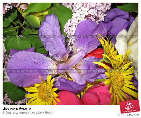 Купить «Цветок в букете», фото № 157169, снято 25 мая 2007 г. (c) Ольга Шилина / Фотобанк Лори