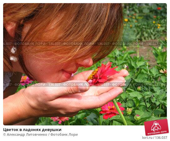 Цветок в ладонях девушки, фото № 136037, снято 13 июля 2006 г. (c) Александр Литовченко / Фотобанк Лори
