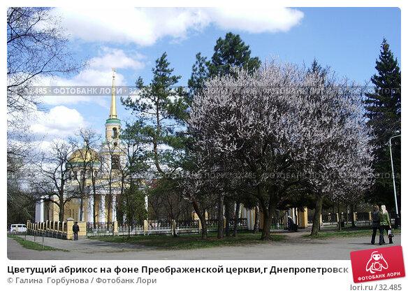 Цветущий абрикос на фоне Преображенской церкви,г Днепропетровск, фото № 32485, снято 26 апреля 2017 г. (c) Галина  Горбунова / Фотобанк Лори