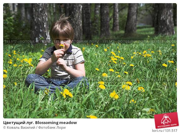 Цветущий луг. Blossoming meadow, фото № 131517, снято 12 мая 2007 г. (c) Коваль Василий / Фотобанк Лори