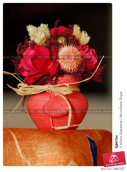 Купить «Цветы», фото № 248597, снято 3 декабря 2006 г. (c) Илья Лиманов / Фотобанк Лори