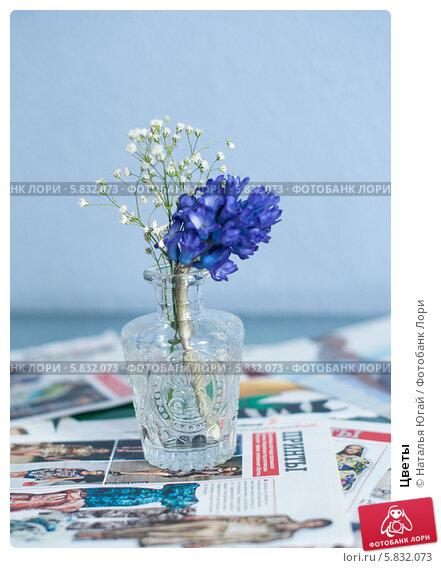 Цветы. Редакционное фото, фотограф Наталья Югай / Фотобанк Лори