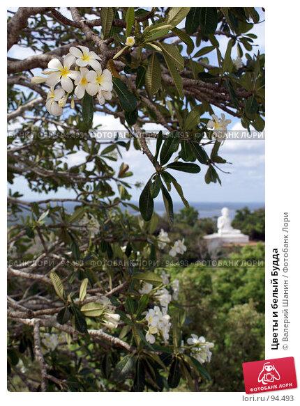 Купить «Цветы и белый Будда», фото № 94493, снято 29 мая 2007 г. (c) Валерий Шанин / Фотобанк Лори