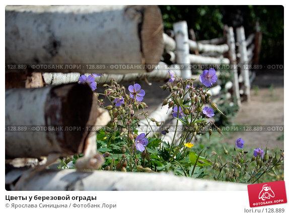 Цветы у березовой ограды, фото № 128889, снято 28 июля 2007 г. (c) Ярослава Синицына / Фотобанк Лори