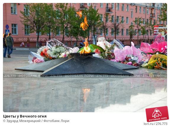 Купить «Цветы у Вечного огня», фото № 276773, снято 3 мая 2008 г. (c) Эдуард Межерицкий / Фотобанк Лори