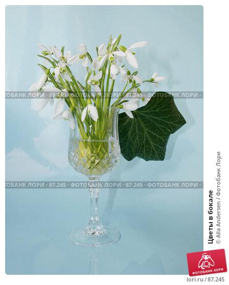 Купить «Цветы в бокале», фото № 87245, снято 15 февраля 2007 г. (c) Alla Andersen / Фотобанк Лори