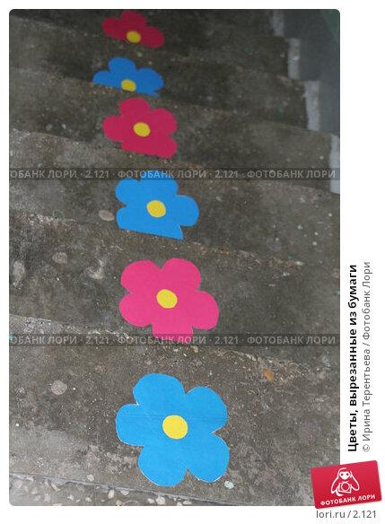 Цветы, вырезанные из бумаги, эксклюзивное фото № 2121, снято 25 июня 2005 г. (c) Ирина Терентьева / Фотобанк Лори
