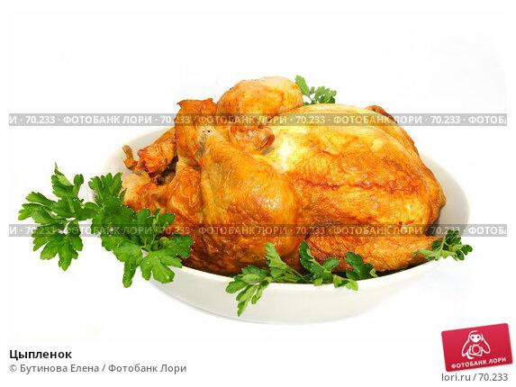 Цыпленок, фото № 70233, снято 8 августа 2007 г. (c) Бутинова Елена / Фотобанк Лори