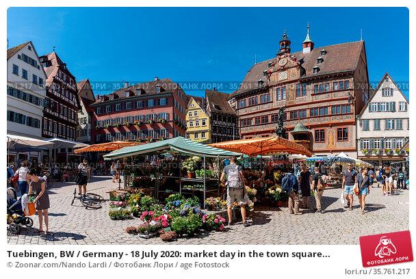 Tuebingen, BW / Germany - 18 July 2020: market day in the town square... Стоковое фото, фотограф Zoonar.com/Nando Lardi / age Fotostock / Фотобанк Лори