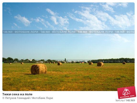 Тюки сена на поле, фото № 148969, снято 9 августа 2007 г. (c) Петухов Геннадий / Фотобанк Лори
