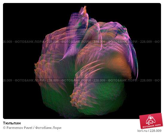 Тюльпан, иллюстрация № 228009 (c) Parmenov Pavel / Фотобанк Лори