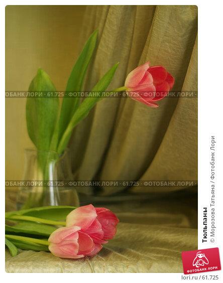 Тюльпаны, фото № 61725, снято 5 марта 2006 г. (c) Морозова Татьяна / Фотобанк Лори