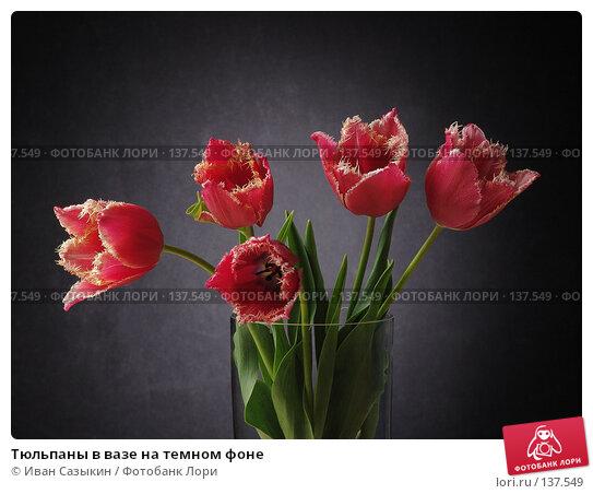 Купить «Тюльпаны в вазе на темном фоне», фото № 137549, снято 20 апреля 2004 г. (c) Иван Сазыкин / Фотобанк Лори
