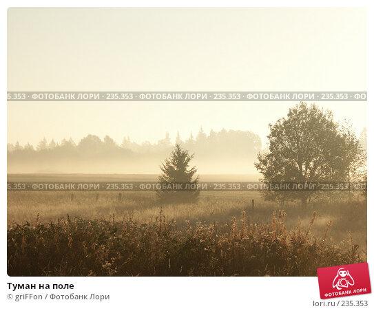 Туман на поле, фото № 235353, снято 25 сентября 2006 г. (c) griFFon / Фотобанк Лори