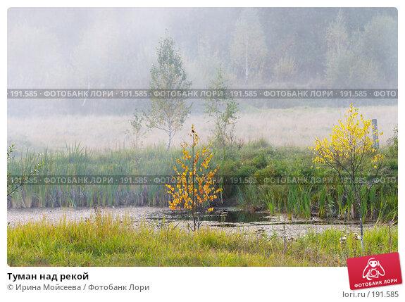 Туман над рекой, эксклюзивное фото № 191585, снято 26 сентября 2007 г. (c) Ирина Мойсеева / Фотобанк Лори