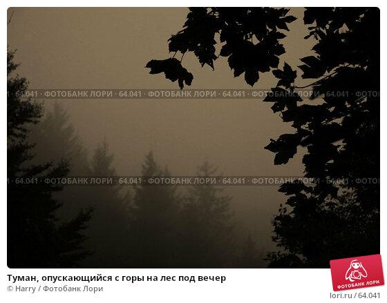 Туман, опускающийся с горы на лес под вечер, фото № 64041, снято 22 сентября 2005 г. (c) Harry / Фотобанк Лори