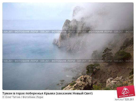 Туман в горах побережья Крыма (заказник Новый Свет), фото № 320261, снято 21 мая 2008 г. (c) Олег Титов / Фотобанк Лори