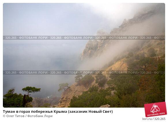 Туман в горах побережья Крыма (заказник Новый Свет), фото № 320265, снято 21 мая 2008 г. (c) Олег Титов / Фотобанк Лори