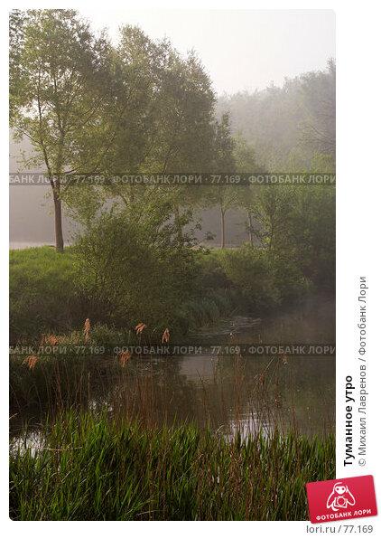 Туманное утро, фото № 77169, снято 27 апреля 2007 г. (c) Михаил Лавренов / Фотобанк Лори